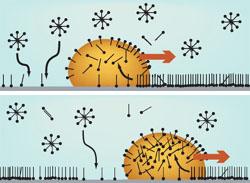 Princip pohybu micel za molekulami m�dla adsorbovan�mi na povrchu